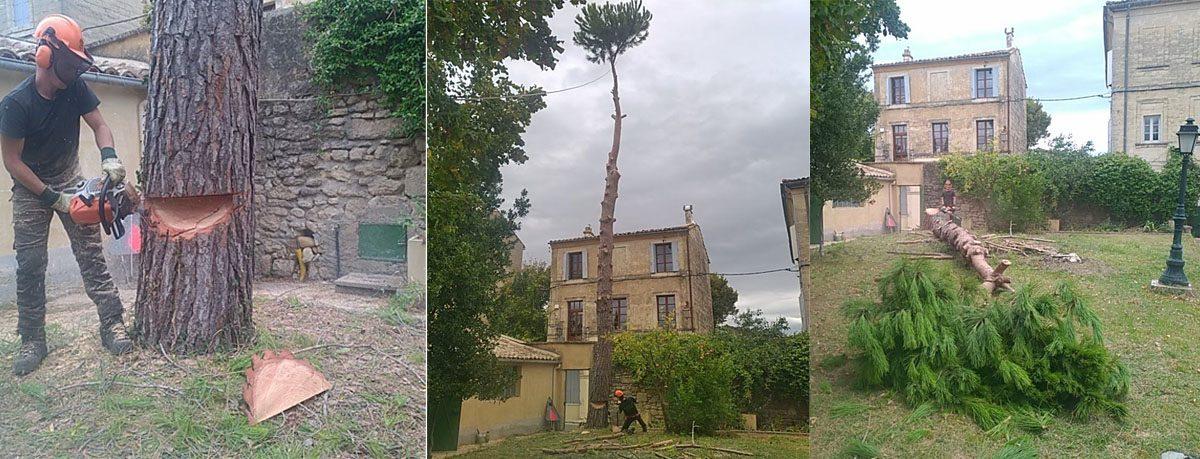 abattage d'un pin en plein centre ville d'Uzès